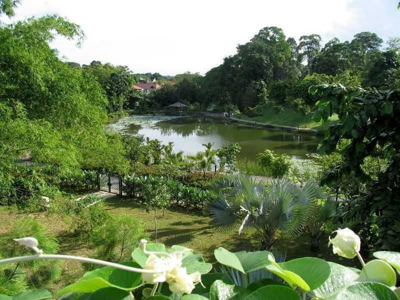 Бали парк Бали Барат
