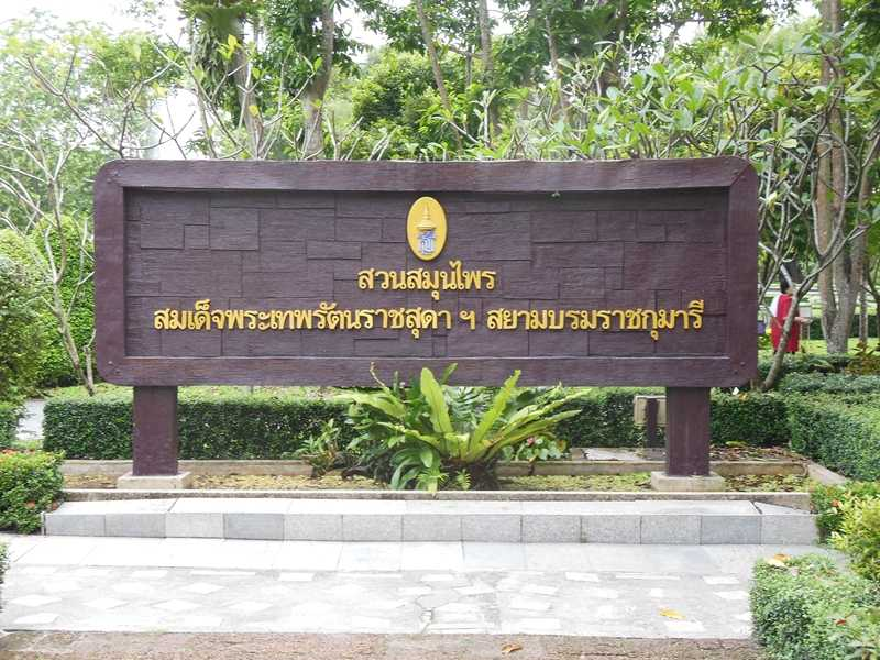 Ботанический сад Maha Chakri1