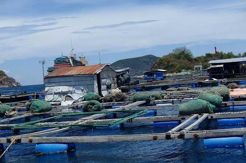 Хошимин Бамбуковая деревня