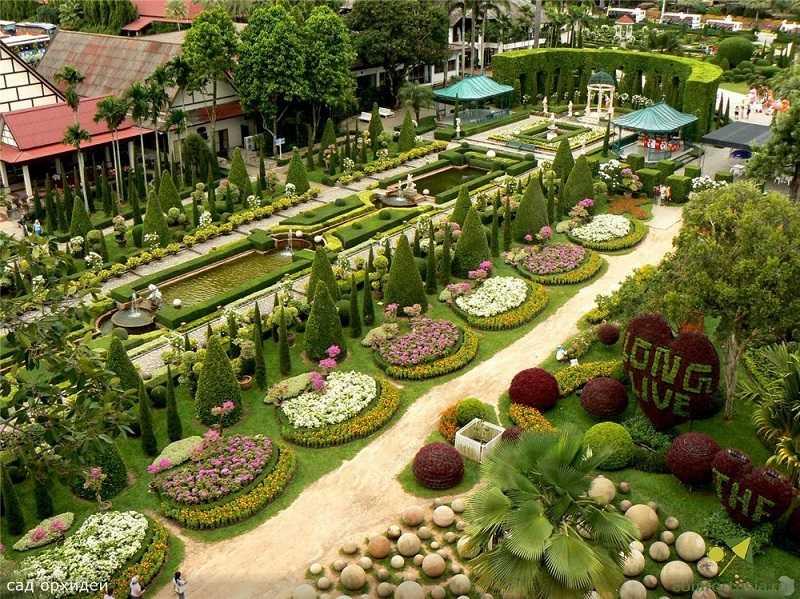 деревня орхидей