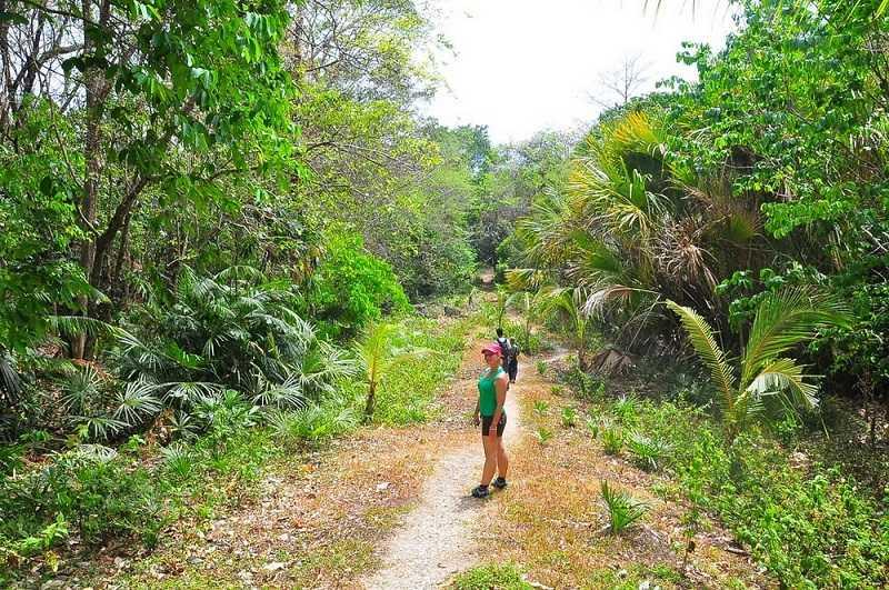 парк Уджунг-Кулон остров Ява
