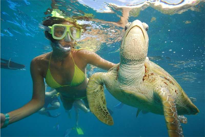 1_snorkel-diving-with-turtle