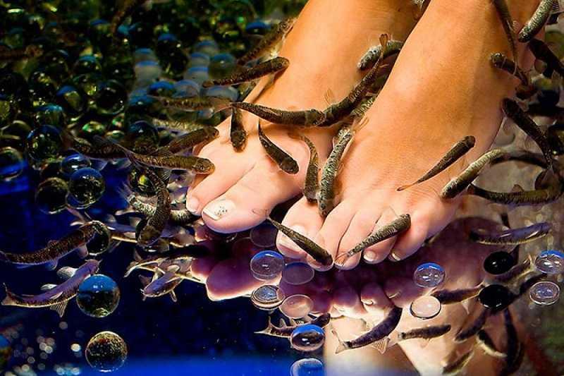 Бангкок океанариум Siam Ocean World пилинг рыбками