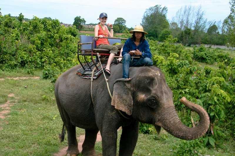 Деревня слонов Паттайя прогулки на слоне