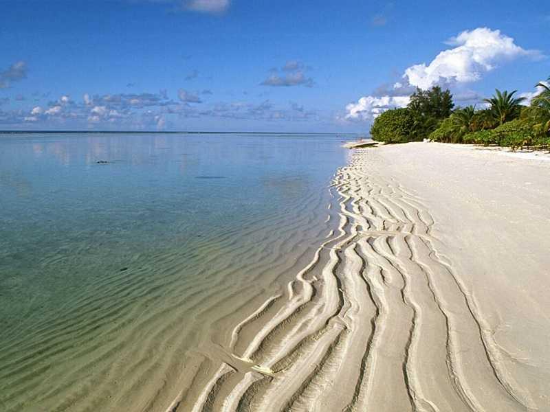 Гоа пляж Бенаулим