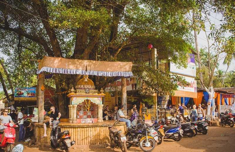 Индия Джус Центр