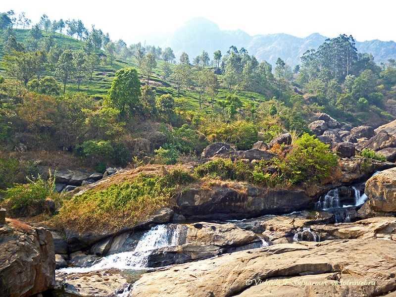 Индия Никобары каучуковые плантации