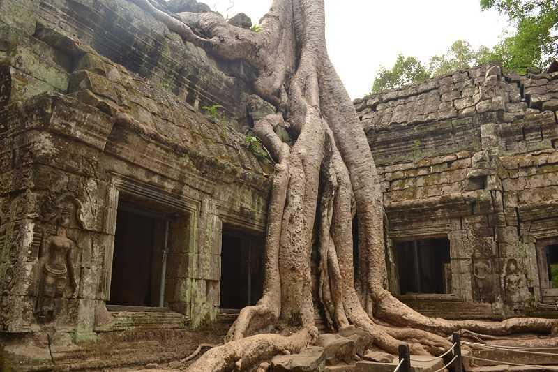 Камбоджа храмовый комплекс Ангкор Ват Та-Пхром