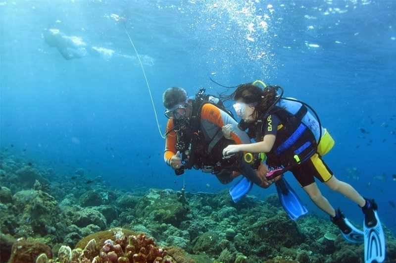Курорт Ловина на Бали дайвинг