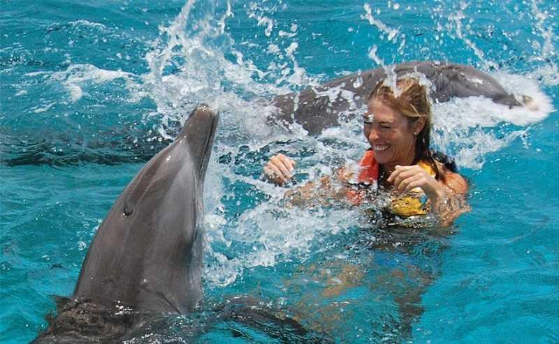 Курорт Ловина на Бали плавание с дельфинами