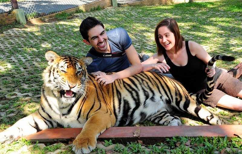 Остров Пхукет Парк тигров