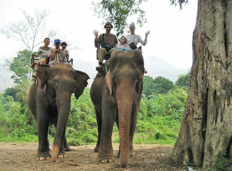 Паттайя деревня слонов