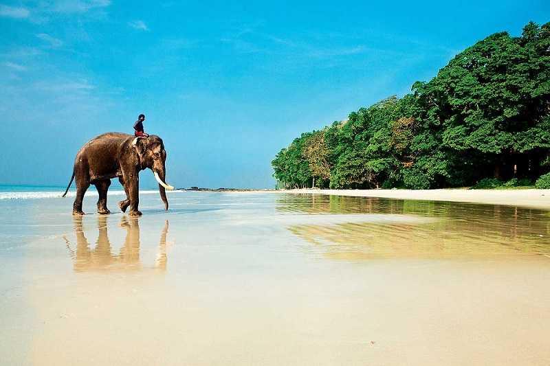 пляжи гоа индия фото