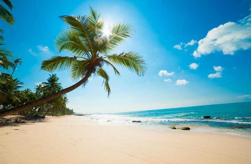 Шри-Ланка пляж