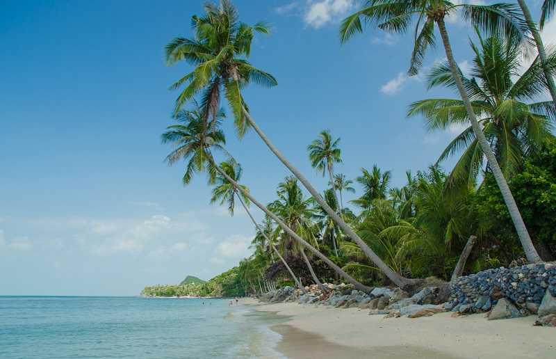 Самуи пляж Бан Тай территория