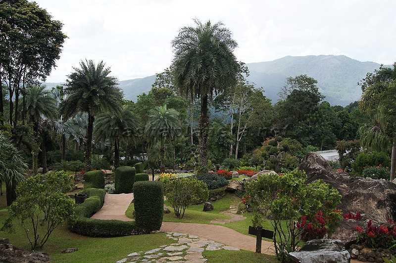 Таиланд город Чианг Рай климат