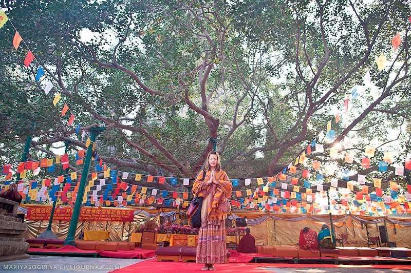 Вьетнам пагода Ханоя-Чанкуок дерево Бодхи