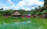 грязелечебница Тхап Ба Нячанг