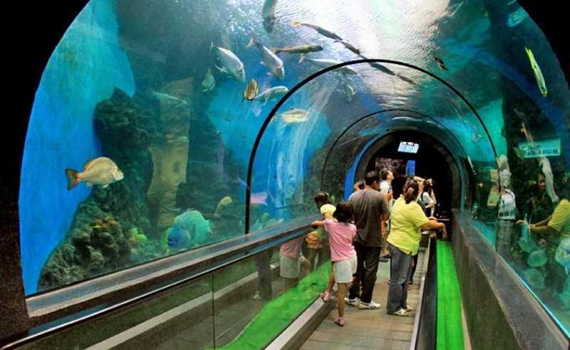 пхукет океанариум туннель