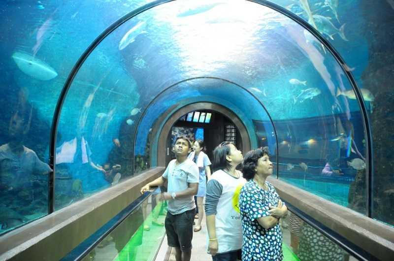 пхукет океанариум туннель2