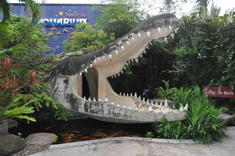 зоопарк на пхукете аквариум